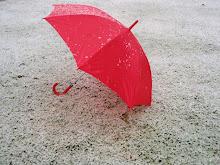 Eerste sneeuw (16-12-2011).