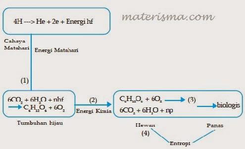 http://www.materisma.com/2014/10/penjelasan-proses-metabolisme.html