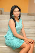 Hari Priya Fabulous photos-thumbnail-12