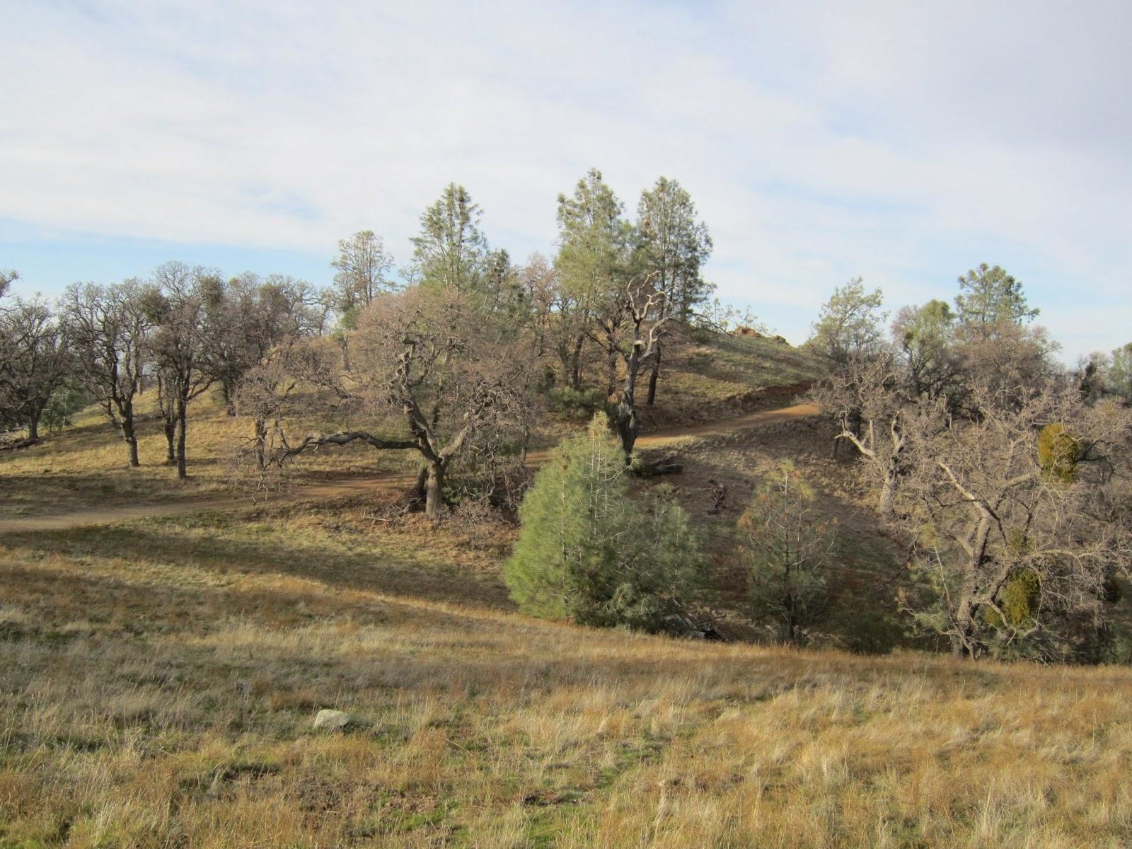 Rocky Ridge Rowell Ridge