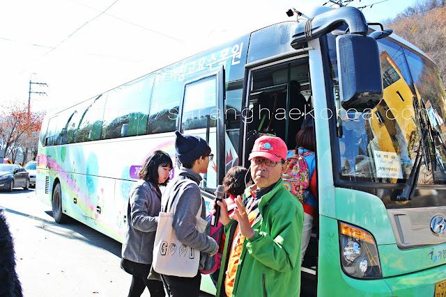 The Gapyeong City Bus Tour