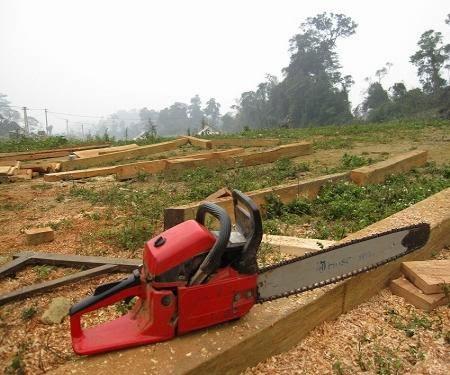 Gia Lai: Bắt giữ hai đối tượng cướp cưa lốc để vào rừng làm gỗ