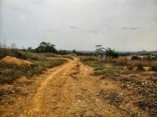 Cambamba