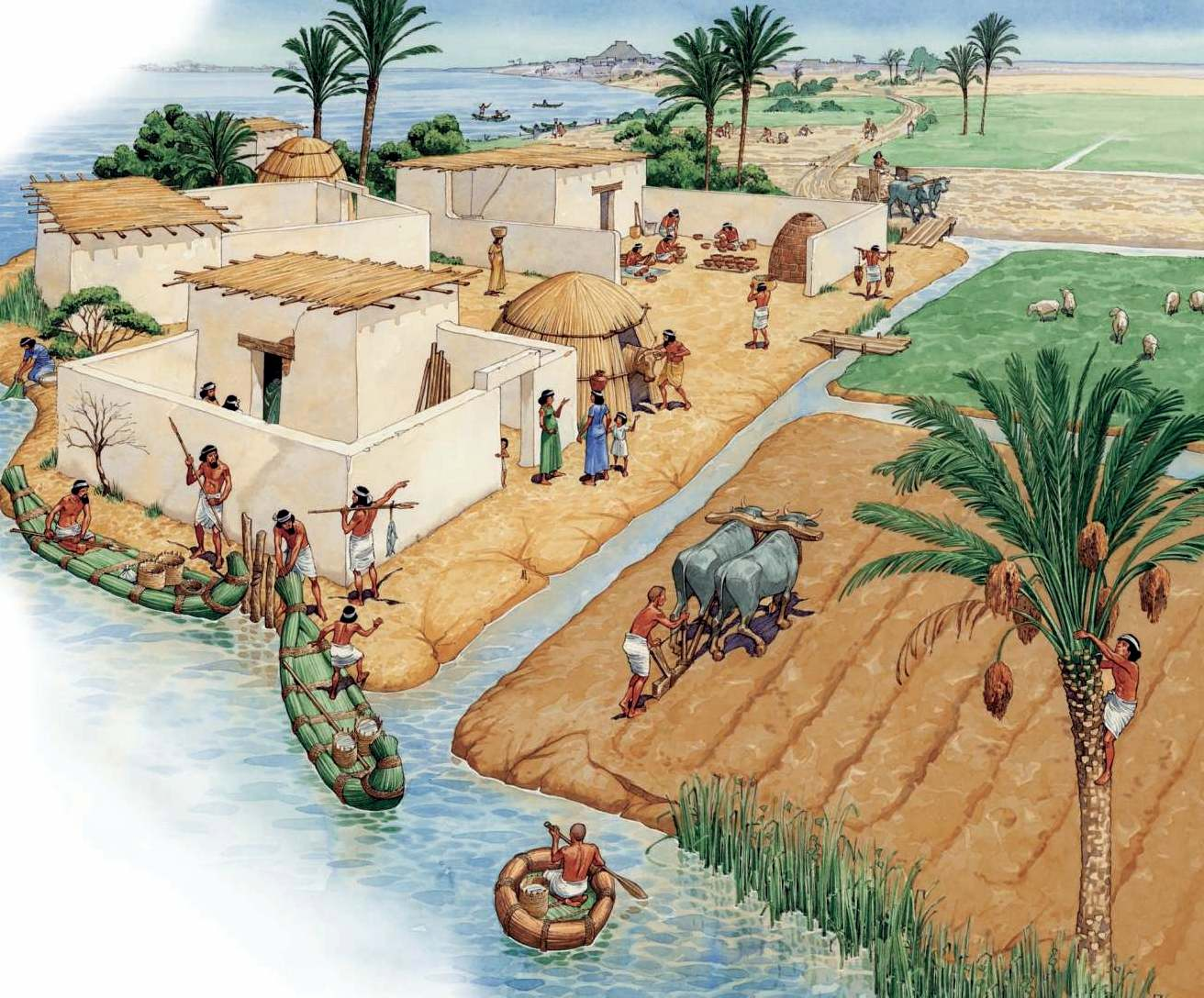 occupation and trade of mesopotamian civilization The main occupation of the mesopotamians was agriculture the euphrates and tigris rivers were their main sources of water supplyflooding was irregular so they built an elaborate and highly.