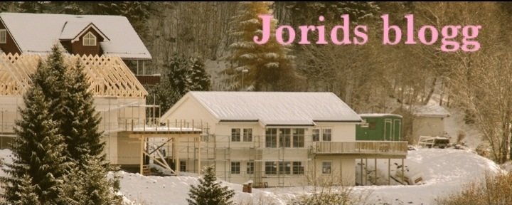 Jorids blogg