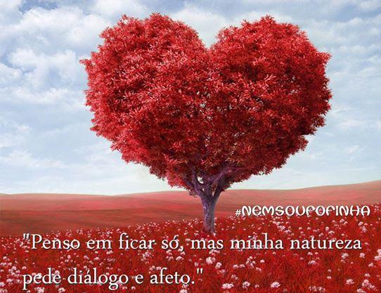 Frase Afeto Recadinho Facebook Google+  WhatsApp