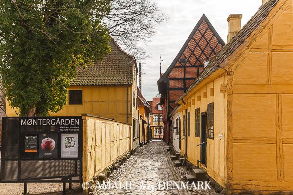 Amalie loves Denmark - Ferienhausurlaub auf Fünen, Odense