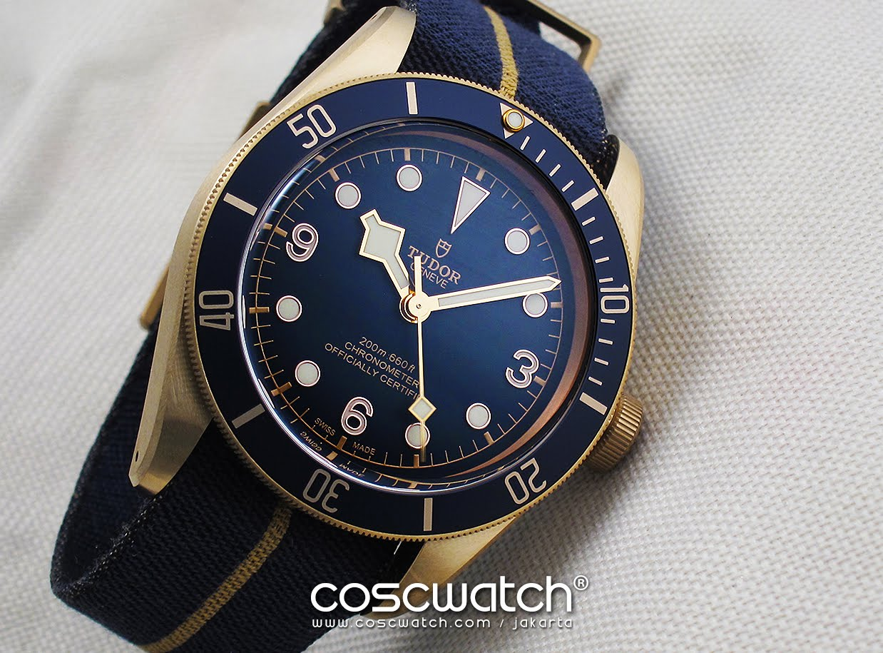 Tudor Blackbay Bronze 'Bucherer Edition'