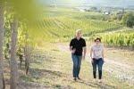 Weingut Hessert Horrweiler/Rheinhessen 4 Weissweine und 2 Rotweine