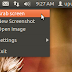 Take and Edit Screenshots with qScreenshot Under Ubuntu 11.10/12.04