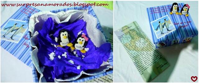 caixa história de pinguins