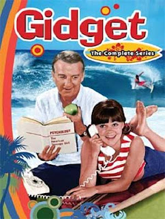 Gidget's TV series on DVD