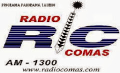 "PROGRAMA RADIAL ""PANORAMA TAURINO DEL PERÚ"""