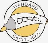 Copic Standard Certification