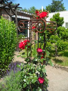 Eiserne Rankhilfe Rosen