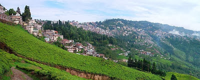 Darjeeling -gangtok Honeymoon Tours, honeymoon tours, honeymoon tours in India, honeymoon Darjeeling -gangtok tours, honeymoon tour packages in Darjeeling -gangtok india, balajitourtravel.com