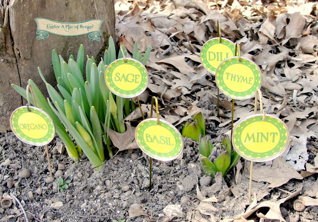 Recycled Garden Markers
