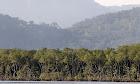 Reservas Ambientais