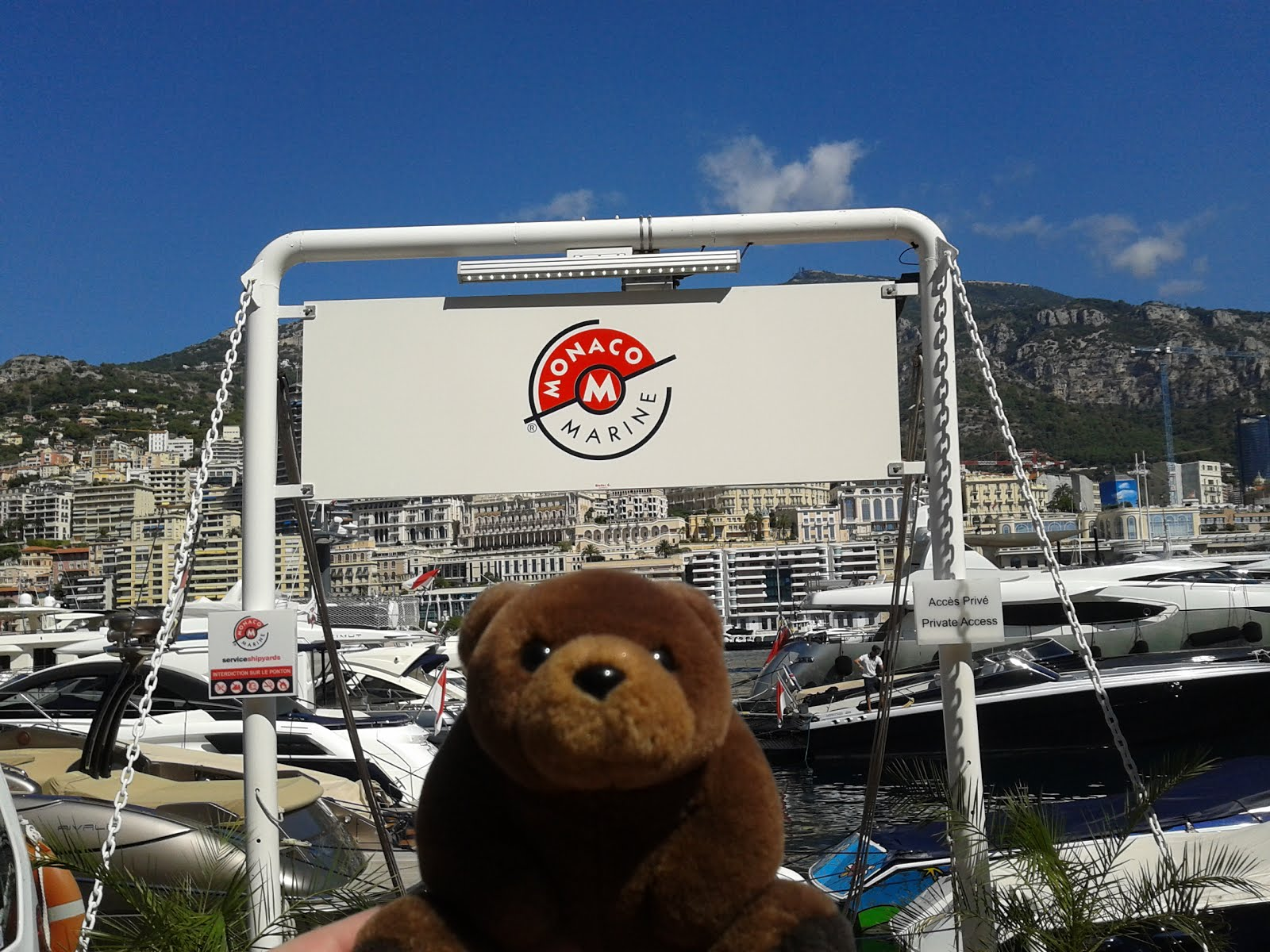 Teddy Bear in Monte Carlo