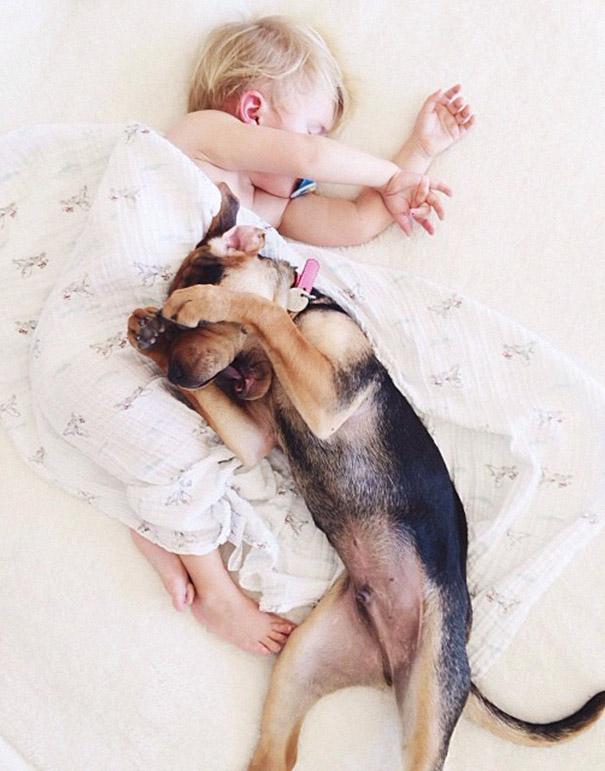 Theo y Beau: La siesta del niño y el perrito