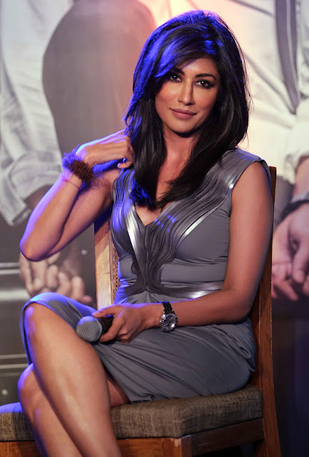 Chitrangada Singh at Inkaar calender launch
