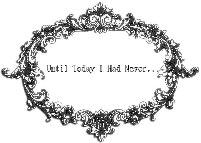 Until Today I Had Never...