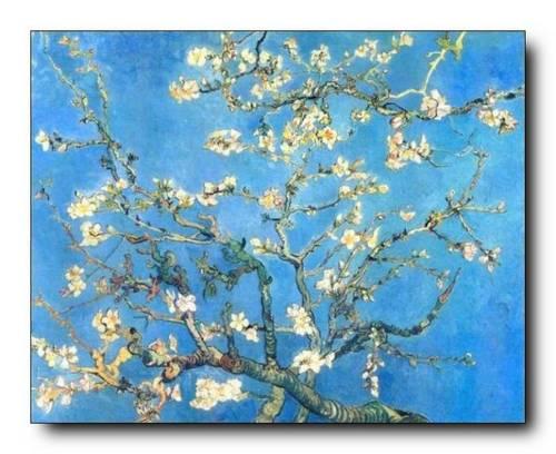 Conchiglie eppure torna primavera for Quadri fiori famosi