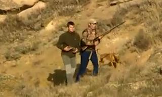 caza menor con perros