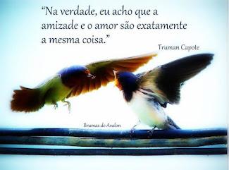 Amizade é o amor que nunca morre...