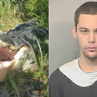 Florida Burglar Killed By Alligator When Fleeing Deputies