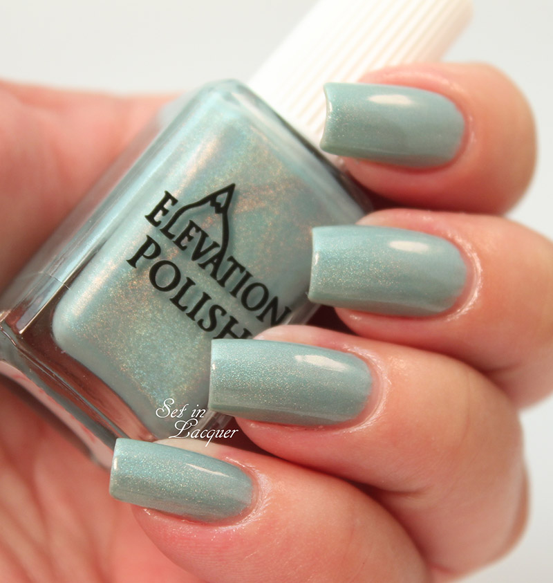 Elevation Polish - Oasis SBP