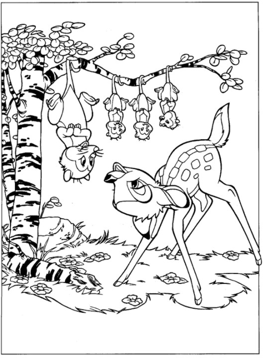 Desenhos Preto e Branco Bambi e Seus Amigos Colorir
