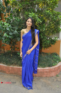 Nikitha Narayana Pictures in Blue Saree at National Silk Expo  0008