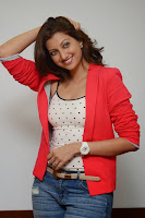 Actress Hamsa Nandini Pictures in Jeans at Loukyam Movie Success Interview   025.jpg