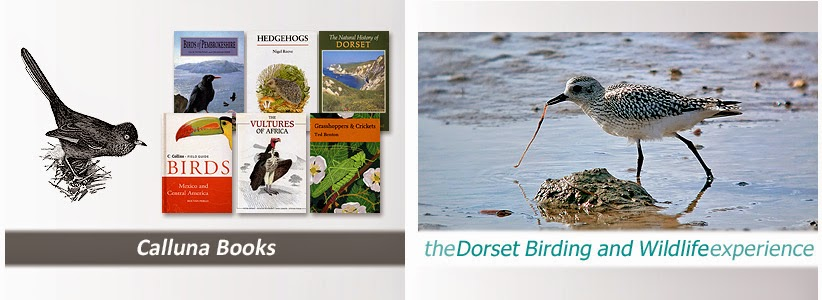 Calluna Books / The Dorset Birding and Wildlife Experience Blog