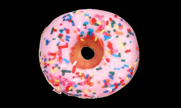 http://www.paper-source.com/cgi-bin/paper/item/Donut-Pillow/3303_041/520326.html