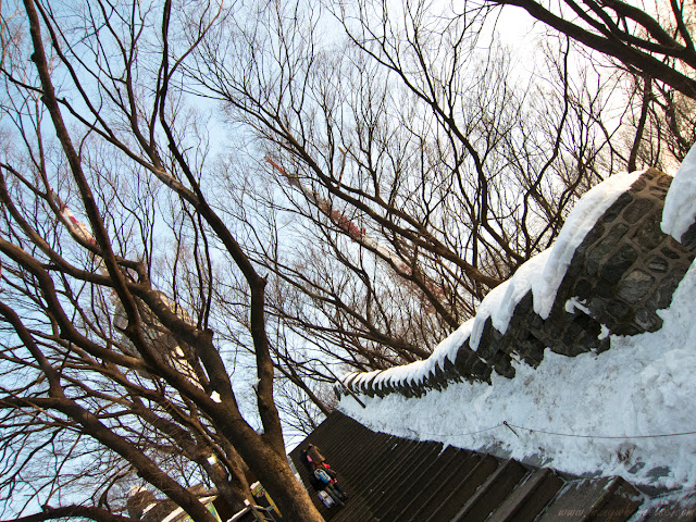 Stairway to N Seoul Tower