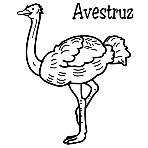 Dibujos para imprimir y colorear: Avestruz para colorear