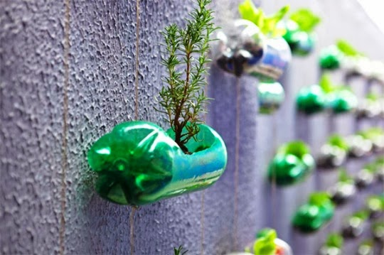 reciclado botellas recycled bottles