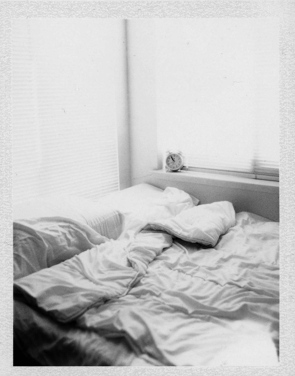fp3000b polaroid 195