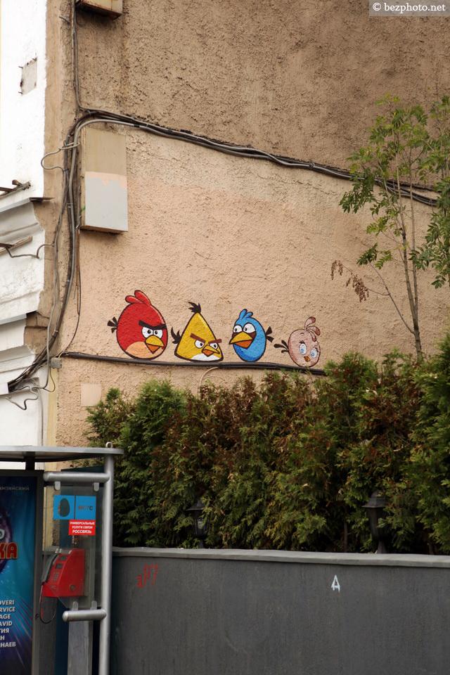 граффити птицы