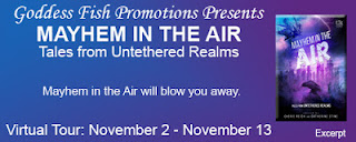 http://goddessfishpromotions.blogspot.com/2015/09/excerpt-tour-mayhem-in-air-by.html