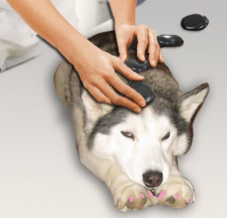 Image result for husky massage