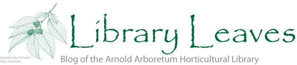 Library Leaves • blog of the Arnold Arboretum Horticultural Library
