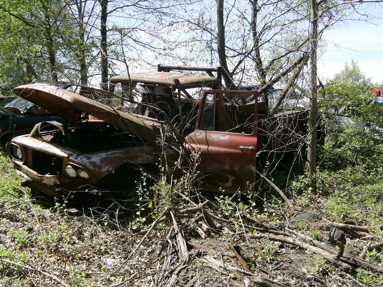 Another Look At A Junkyard Stroll With This olelongrooffan ...