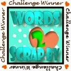 Words2ScrapBy winner