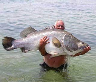 Good Fish