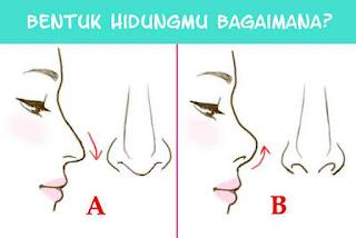 bentuk hidung, mancung, pesek, lubang hidung, nosestrill