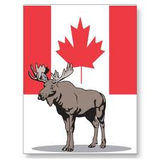 Canada flag and Moose