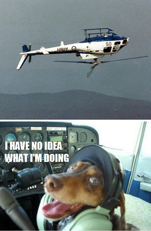 Flying A Helicopter Like A Dog
